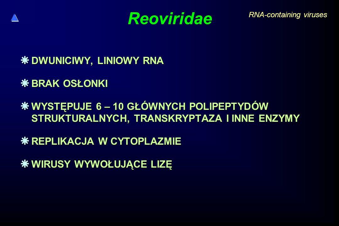 Reoviridae DWUNICIWY, LINIOWY RNA BRAK OSŁONKI