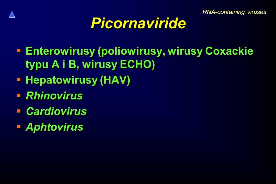 Picornaviride RNA-containing viruses. Enterowirusy (poliowirusy, wirusy Coxackie typu A i B, wirusy ECHO)