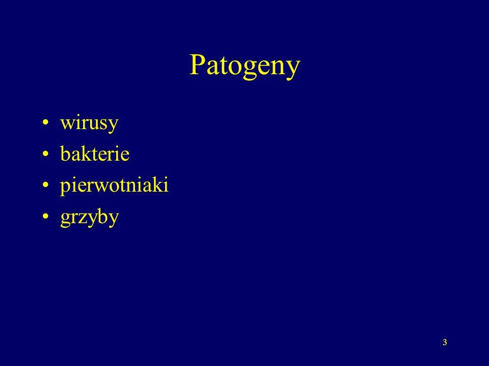 Patogeny wirusy bakterie pierwotniaki grzyby