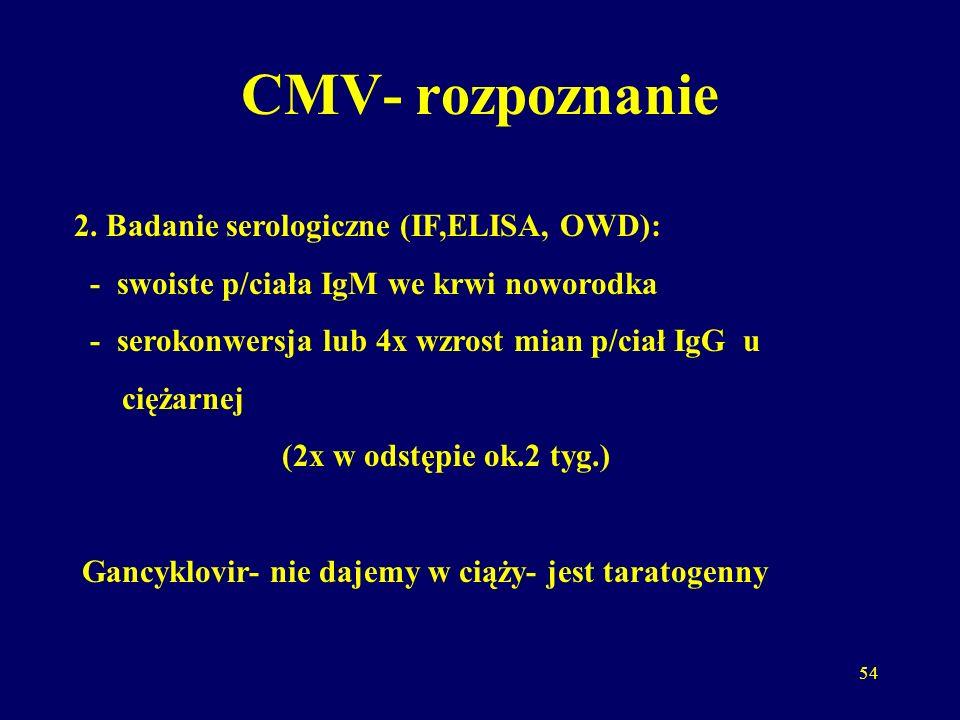 CMV- rozpoznanie 2. Badanie serologiczne (IF,ELISA, OWD):