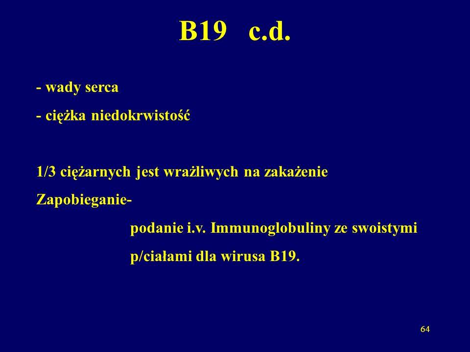 B19 c.d. - wady serca - ciężka niedokrwistość