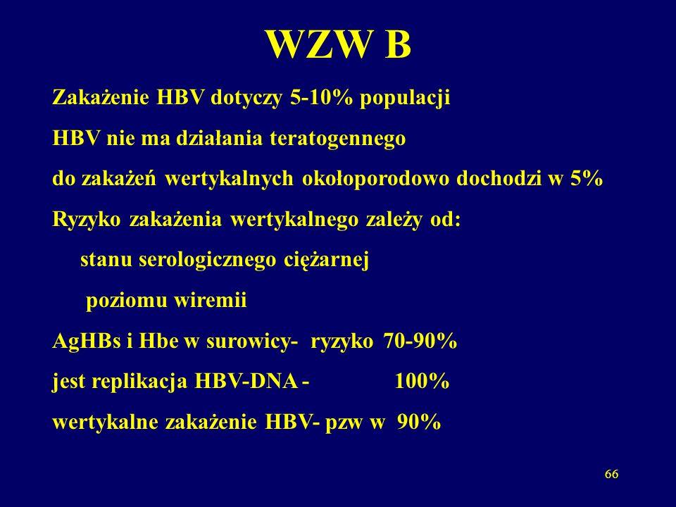 WZW B Zakażenie HBV dotyczy 5-10% populacji