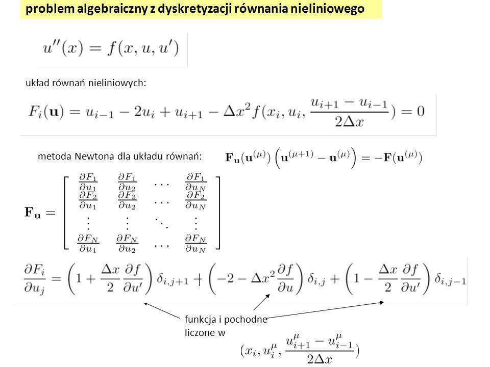 problem algebraiczny z dyskretyzacji równania nieliniowego