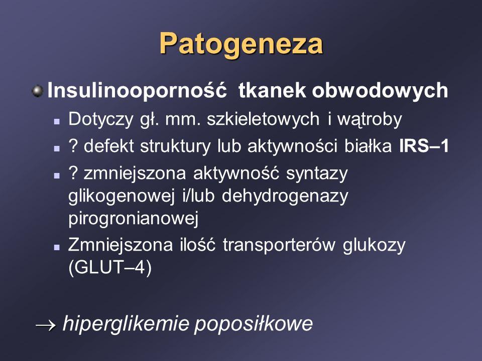 Patogeneza Insulinooporność tkanek obwodowych