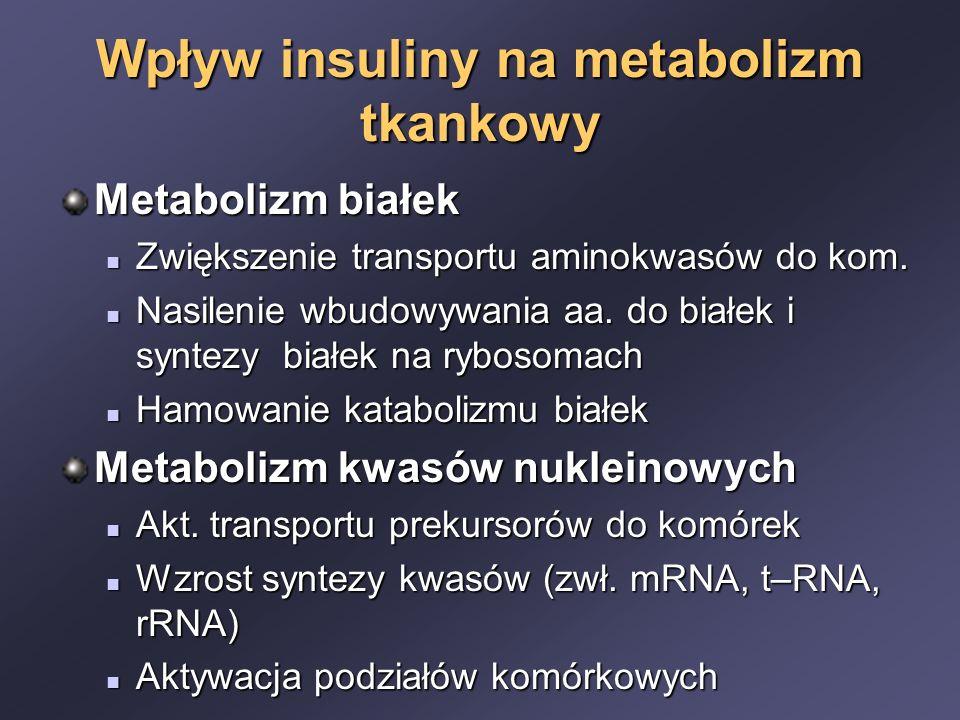 Wpływ insuliny na metabolizm tkankowy