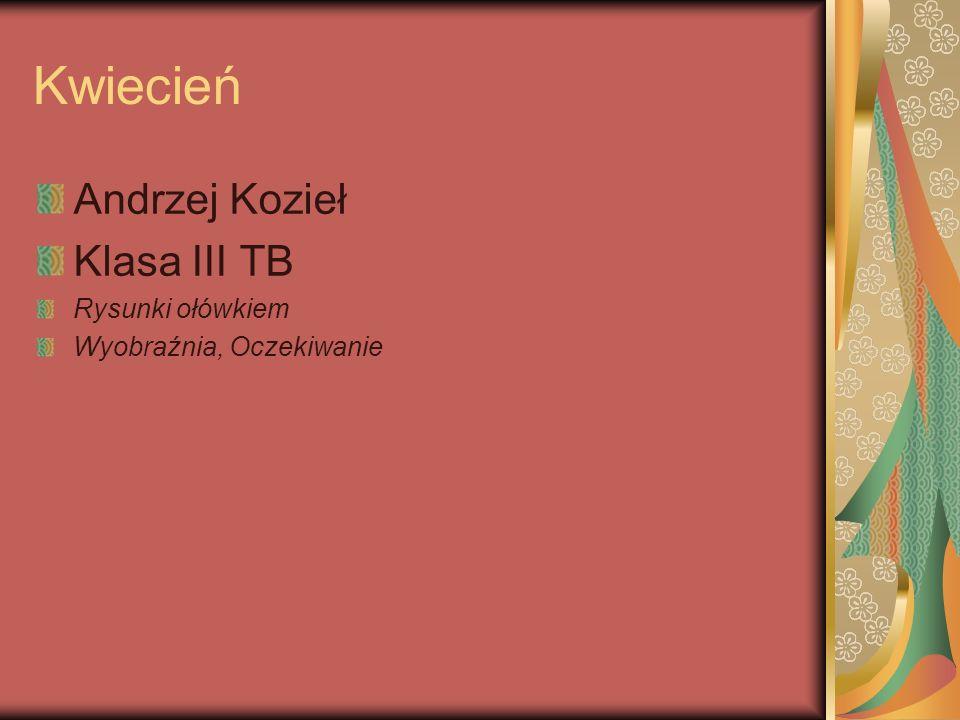Kwiecień Andrzej Kozieł Klasa III TB Rysunki ołówkiem