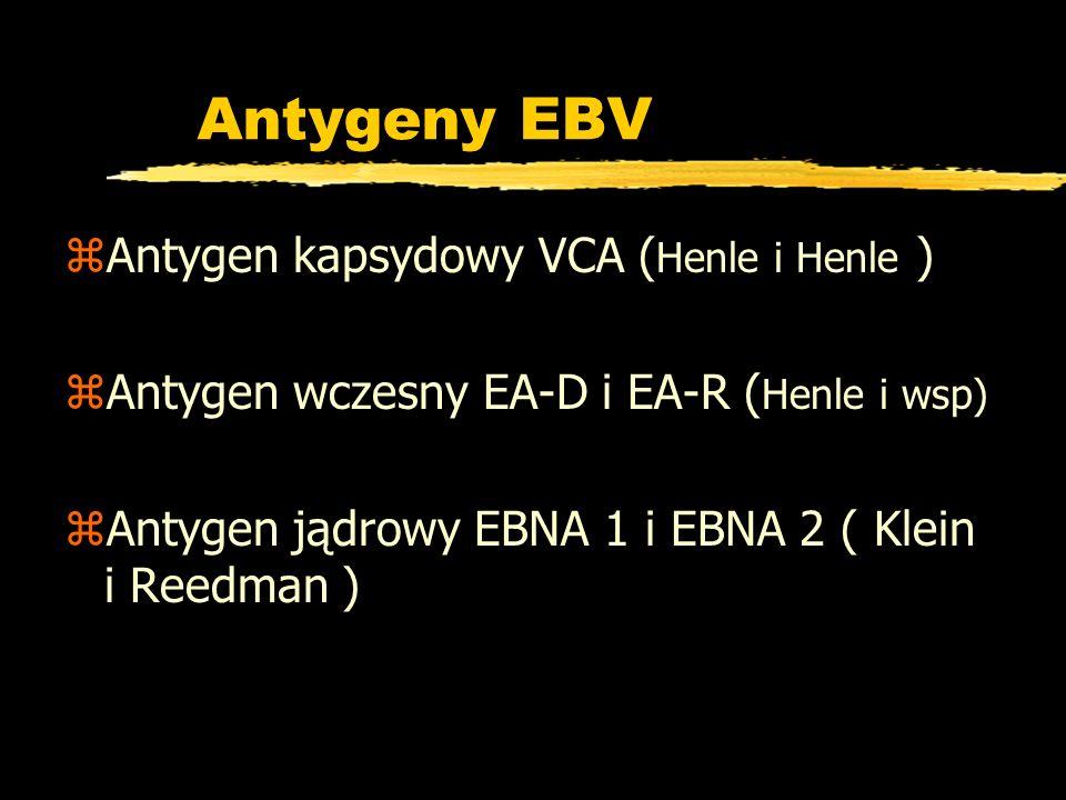 Antygeny EBV Antygen kapsydowy VCA (Henle i Henle )