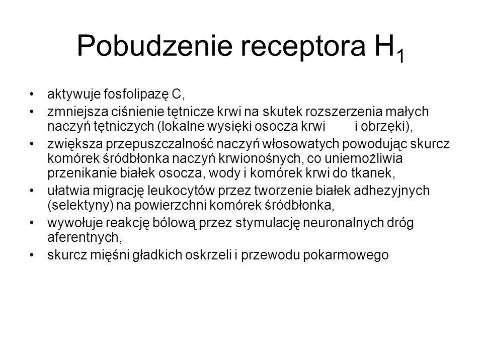 Pobudzenie receptora H1