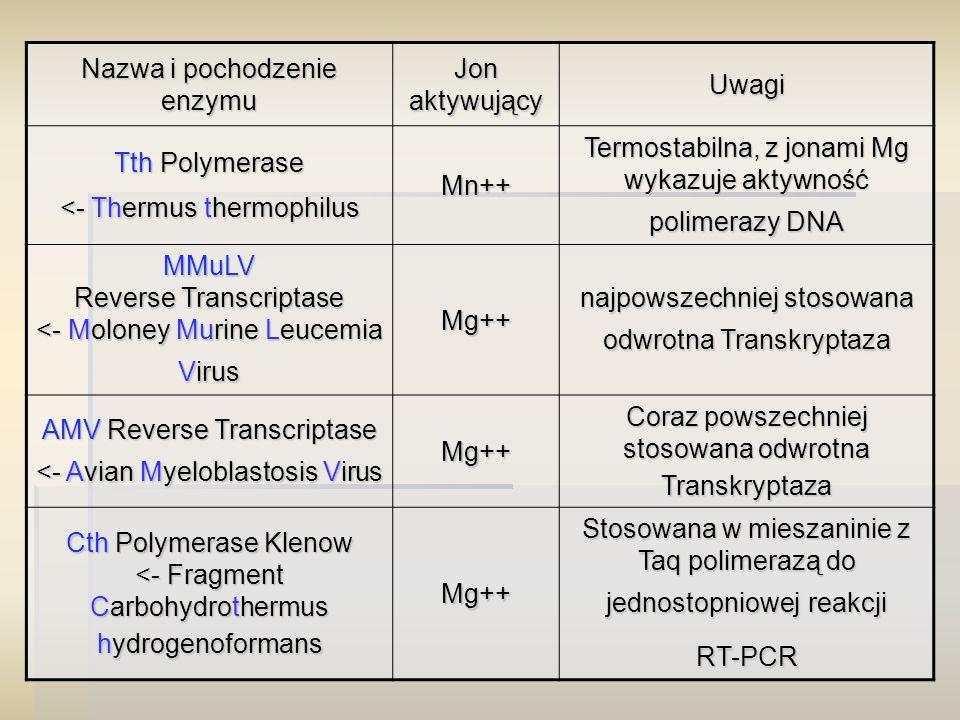 Nazwa i pochodzenie enzymu Jon aktywujący Uwagi Tth Polymerase