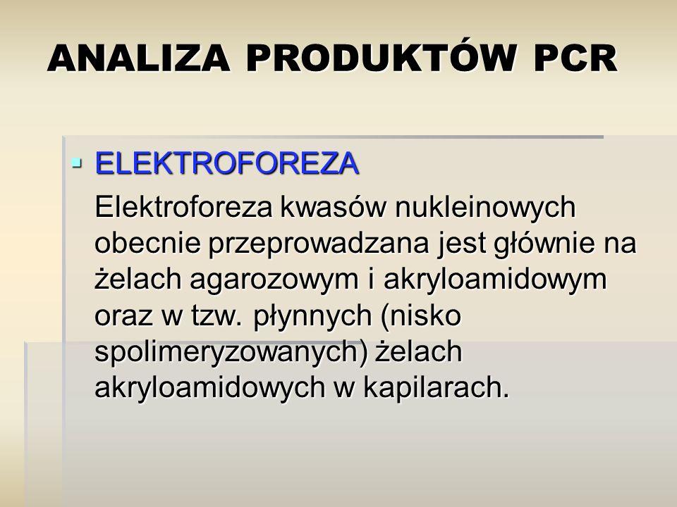 ANALIZA PRODUKTÓW PCR ELEKTROFOREZA