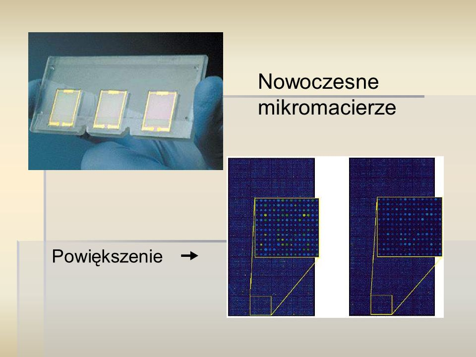 Nowoczesne mikromacierze