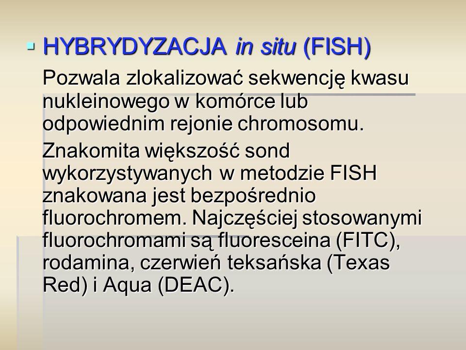 HYBRYDYZACJA in situ (FISH)