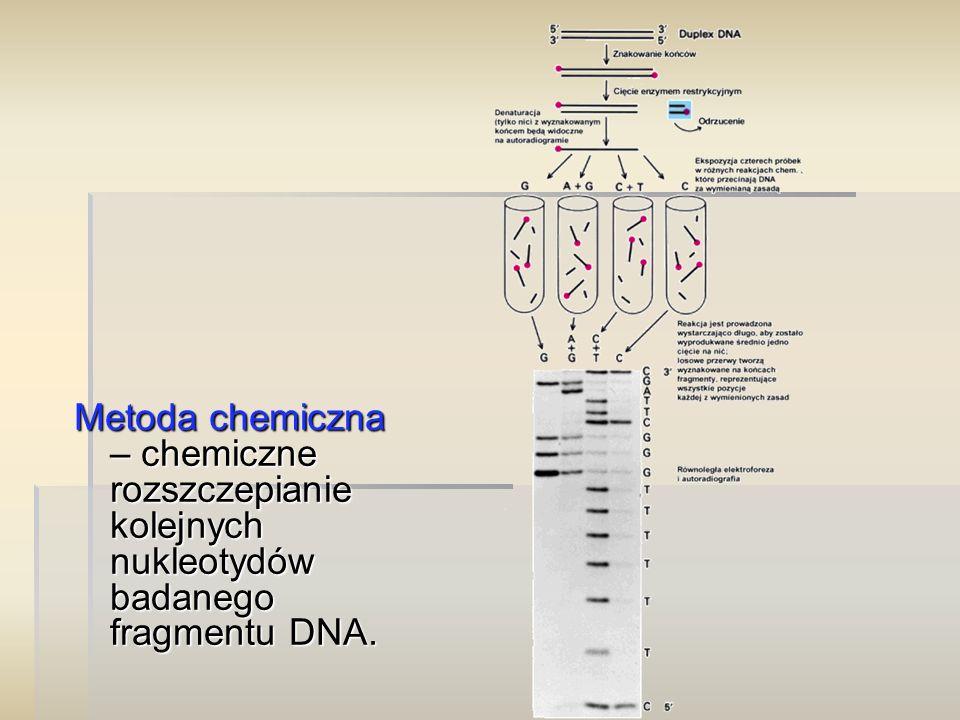 Metoda chemiczna – chemiczne rozszczepianie kolejnych nukleotydów badanego fragmentu DNA.