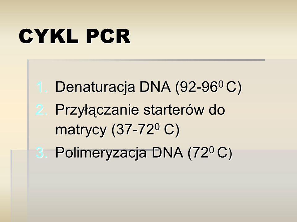 CYKL PCR Denaturacja DNA (92-960 C)