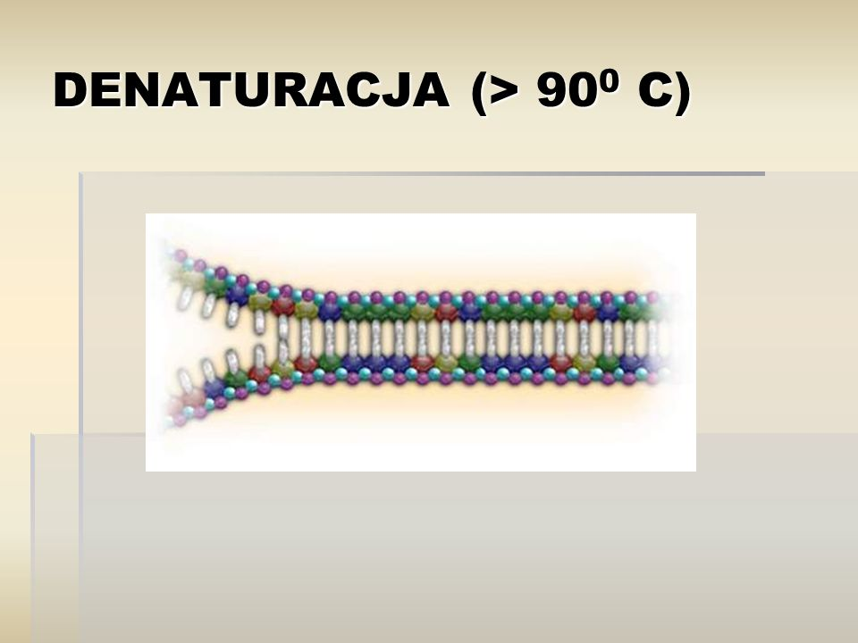 DENATURACJA (> 900 C)