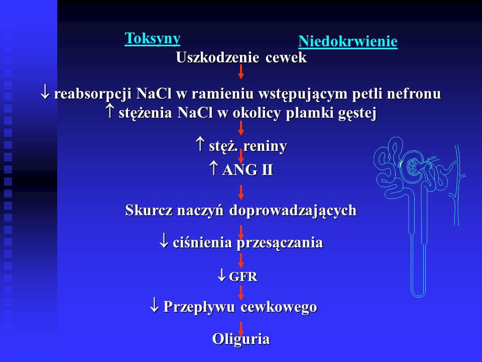  reabsorpcji NaCl w ramieniu wstępującym petli nefronu