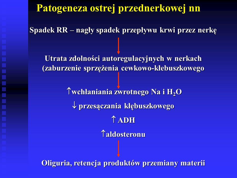 Patogeneza ostrej przednerkowej nn