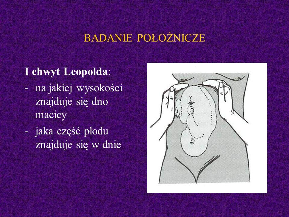 BADANIE POŁOŻNICZE I chwyt Leopolda: na jakiej wysokości znajduje się dno macicy.