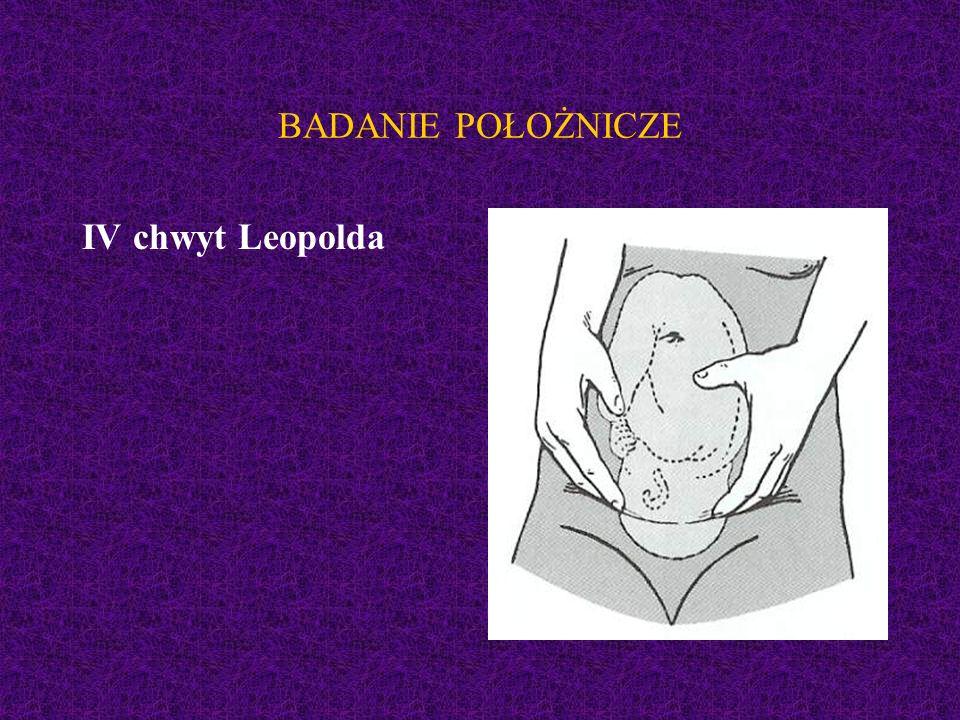 BADANIE POŁOŻNICZE IV chwyt Leopolda