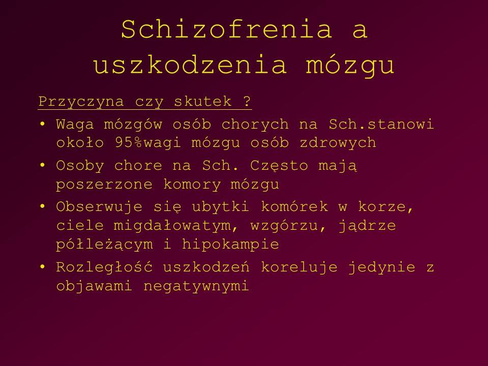 Schizofrenia a uszkodzenia mózgu