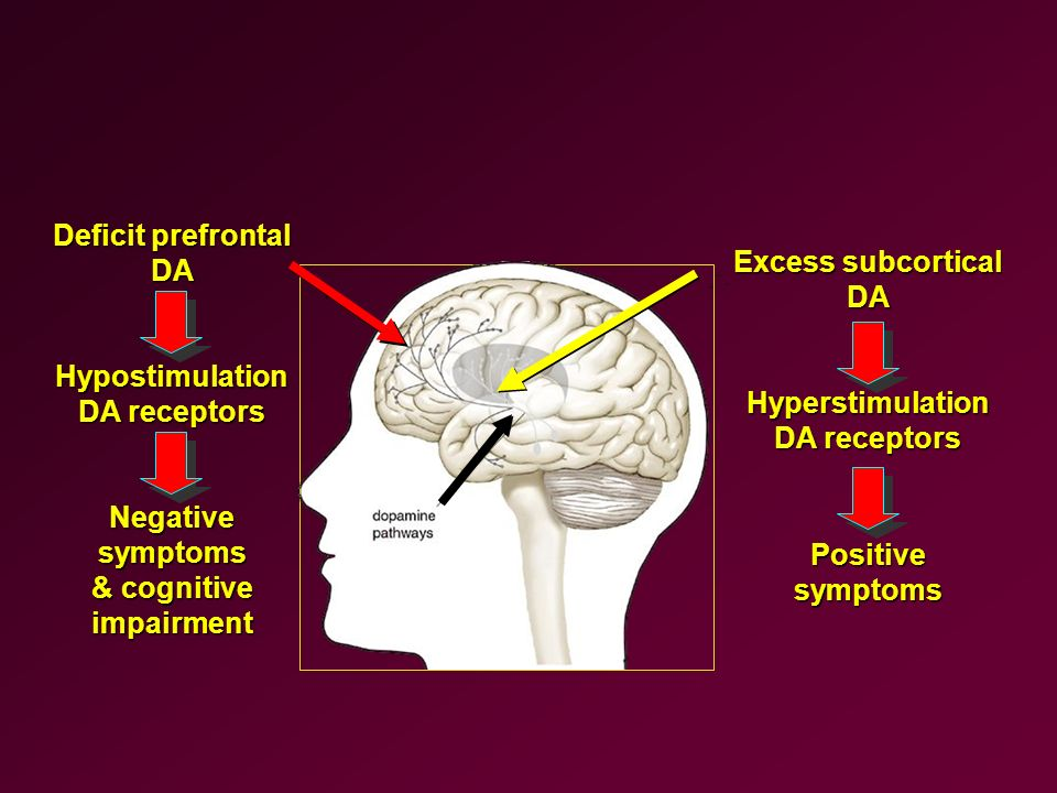 Deficit prefrontal DA. Hypostimulation. DA receptors. Negative symptoms. & cognitive. impairment.