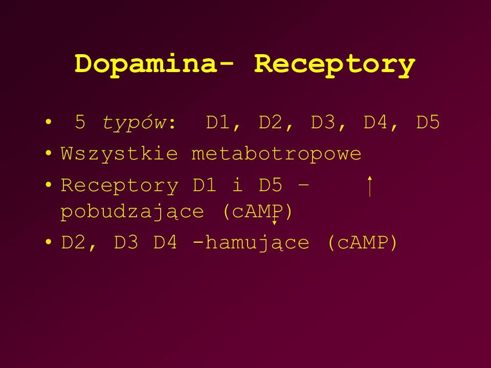 Dopamina- Receptory 5 typów: D1, D2, D3, D4, D5