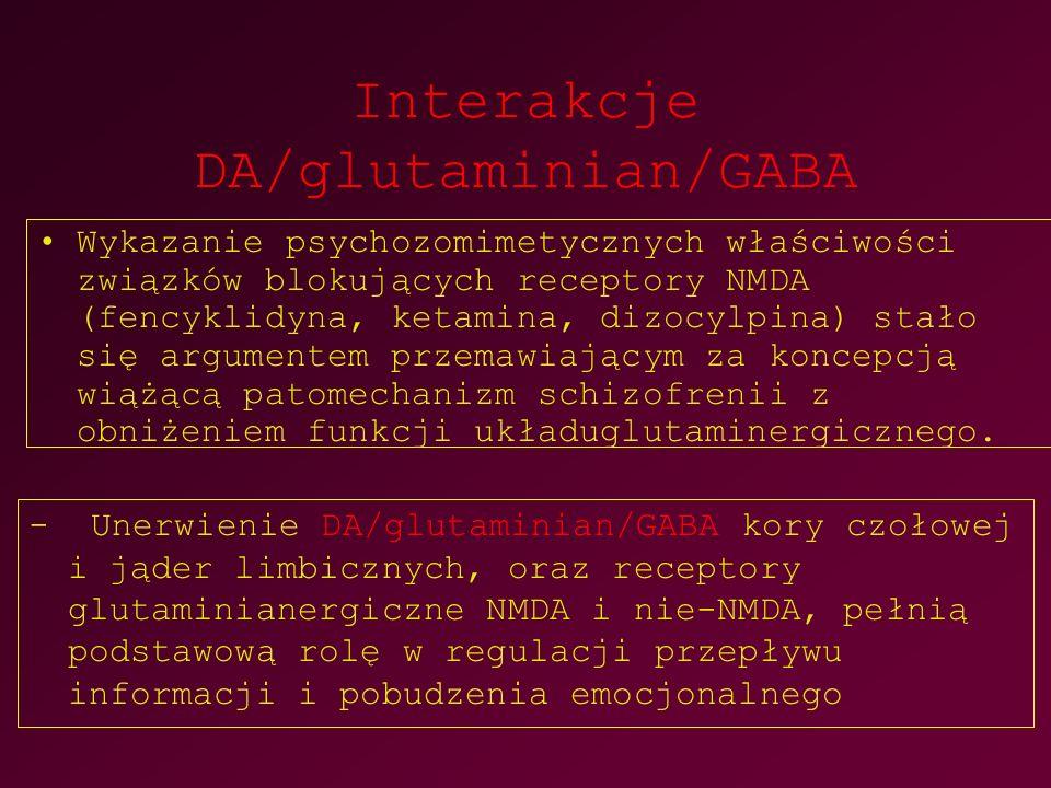 Interakcje DA/glutaminian/GABA