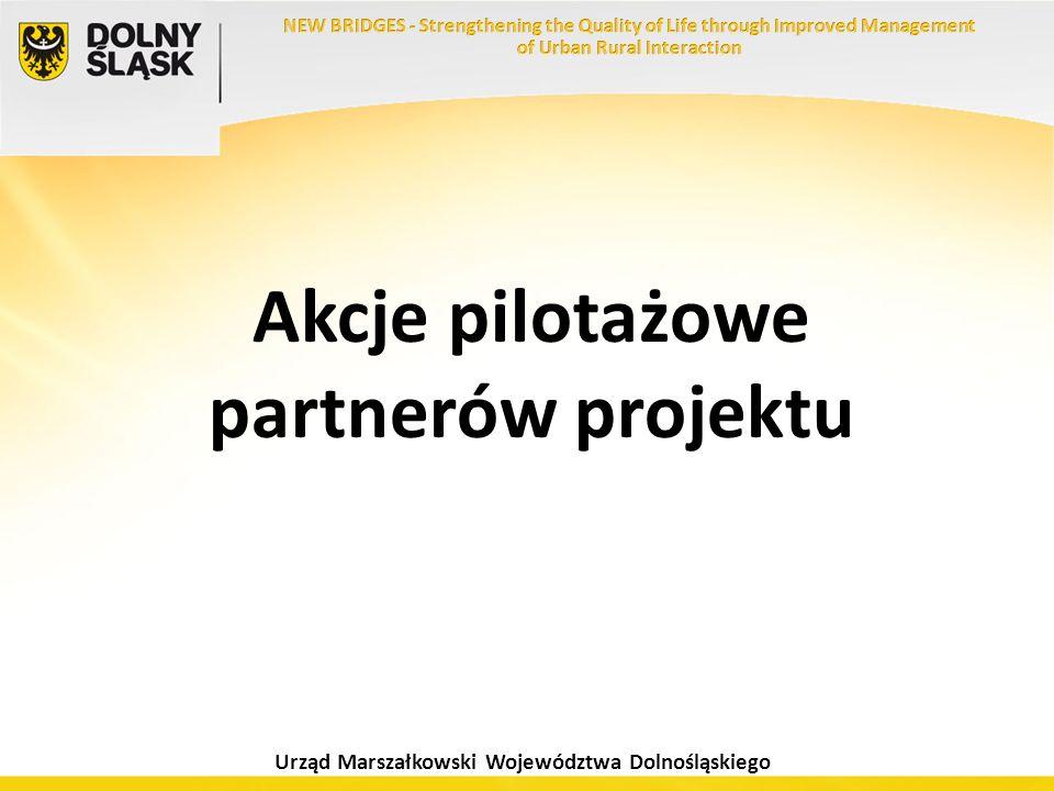 Akcje pilotażowe partnerów projektu