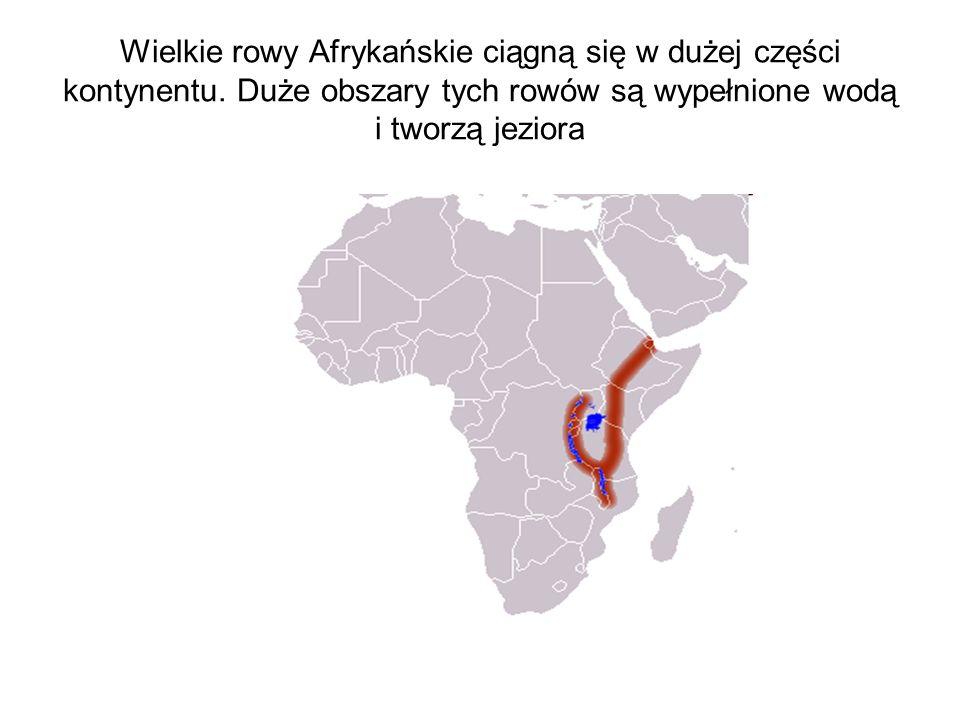 Wielkie rowy Afrykańskie ciągną się w dużej części kontynentu