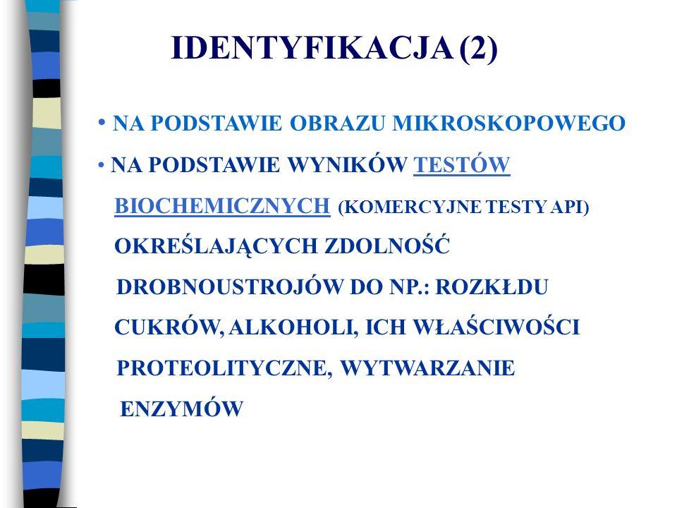 IDENTYFIKACJA (2) NA PODSTAWIE OBRAZU MIKROSKOPOWEGO