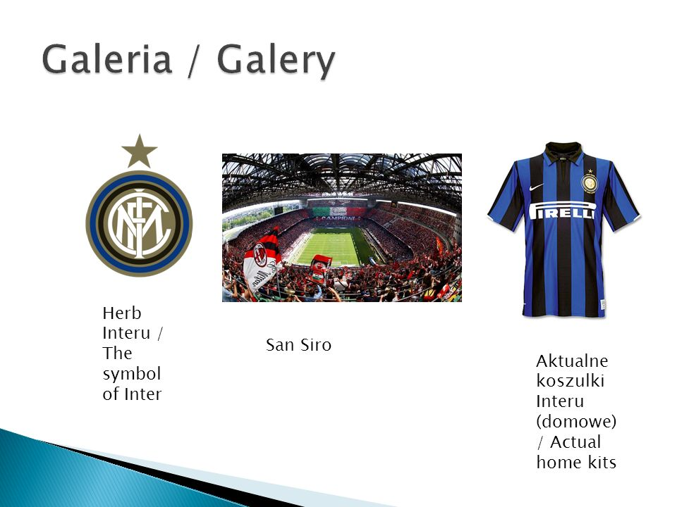 Galeria / Galery Herb Interu / The symbol of Inter San Siro