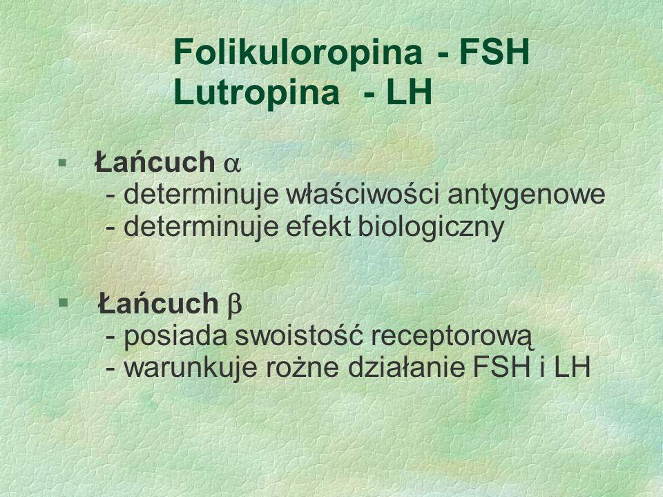 Folikuloropina - FSH Lutropina - LH