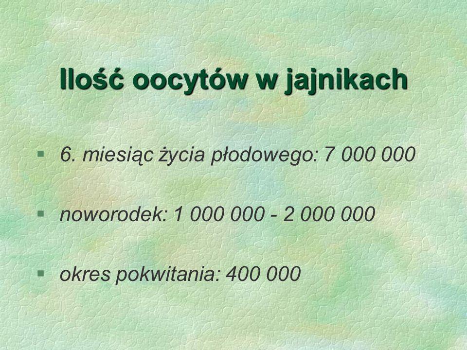 Ilość oocytów w jajnikach