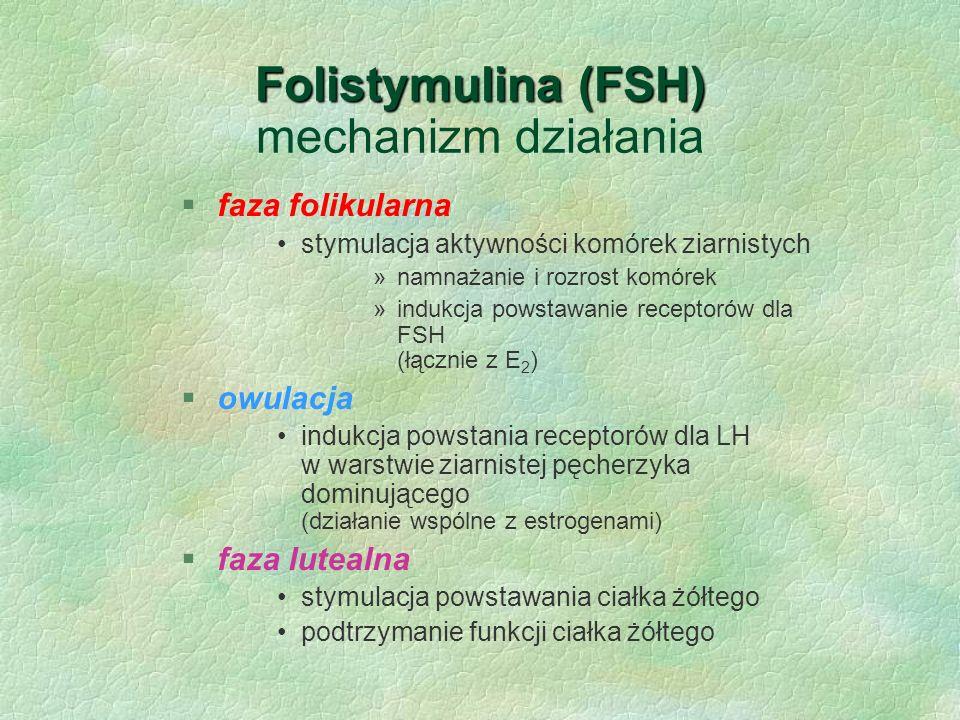 Folistymulina (FSH) mechanizm działania