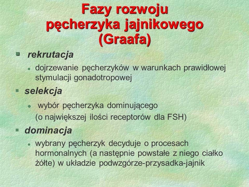 Fazy rozwoju pęcherzyka jajnikowego (Graafa)