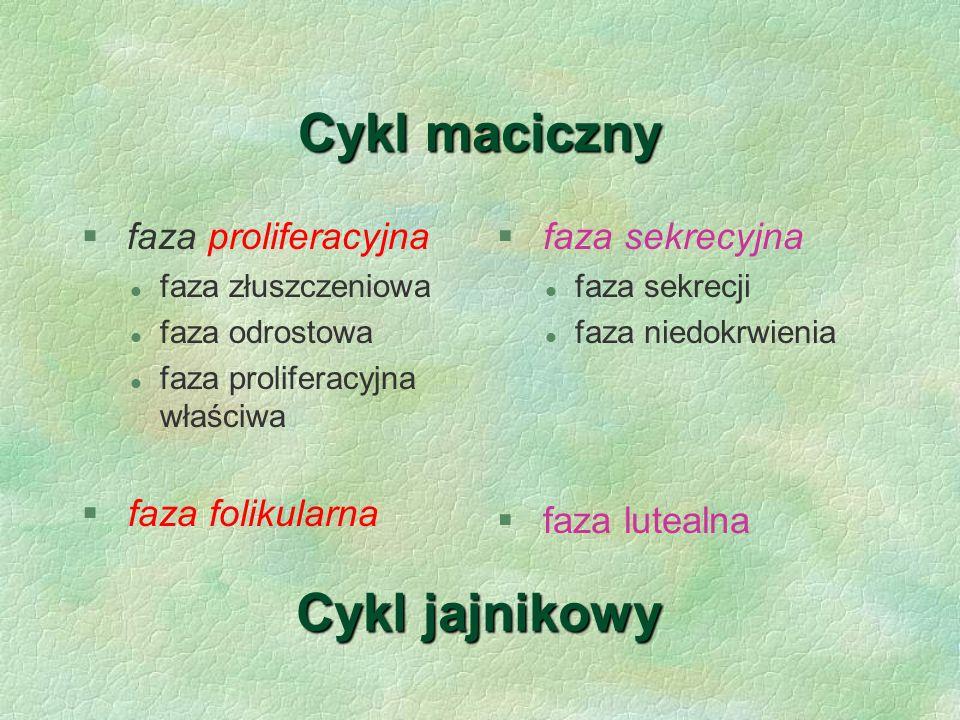Cykl maciczny Cykl jajnikowy