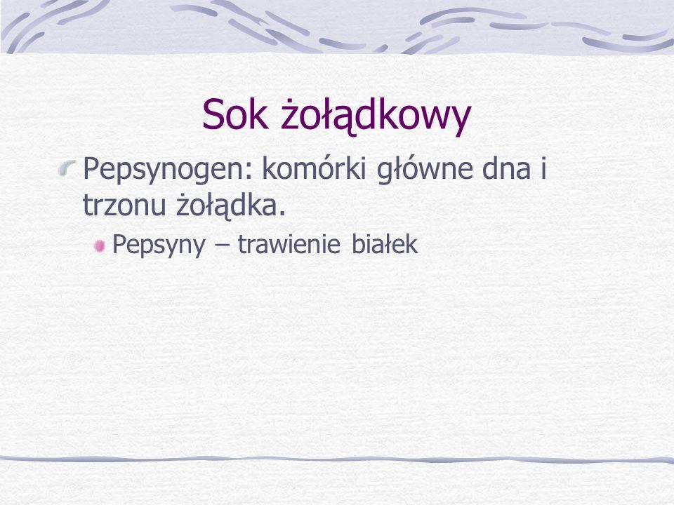 Sok żołądkowy Pepsynogen: komórki główne dna i trzonu żołądka.