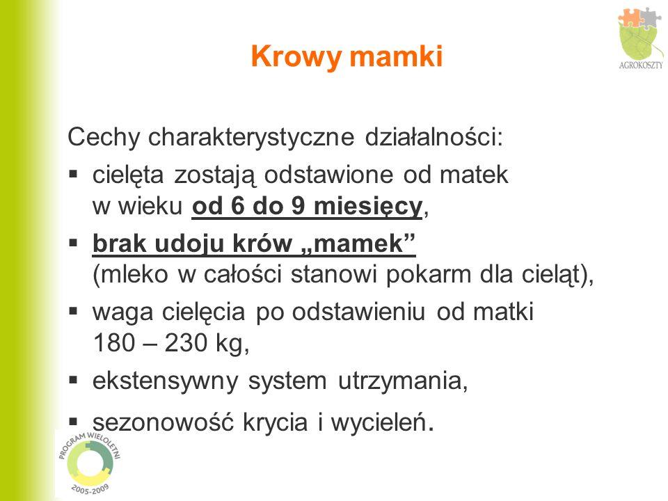 Krowy mamki Cechy charakterystyczne działalności: