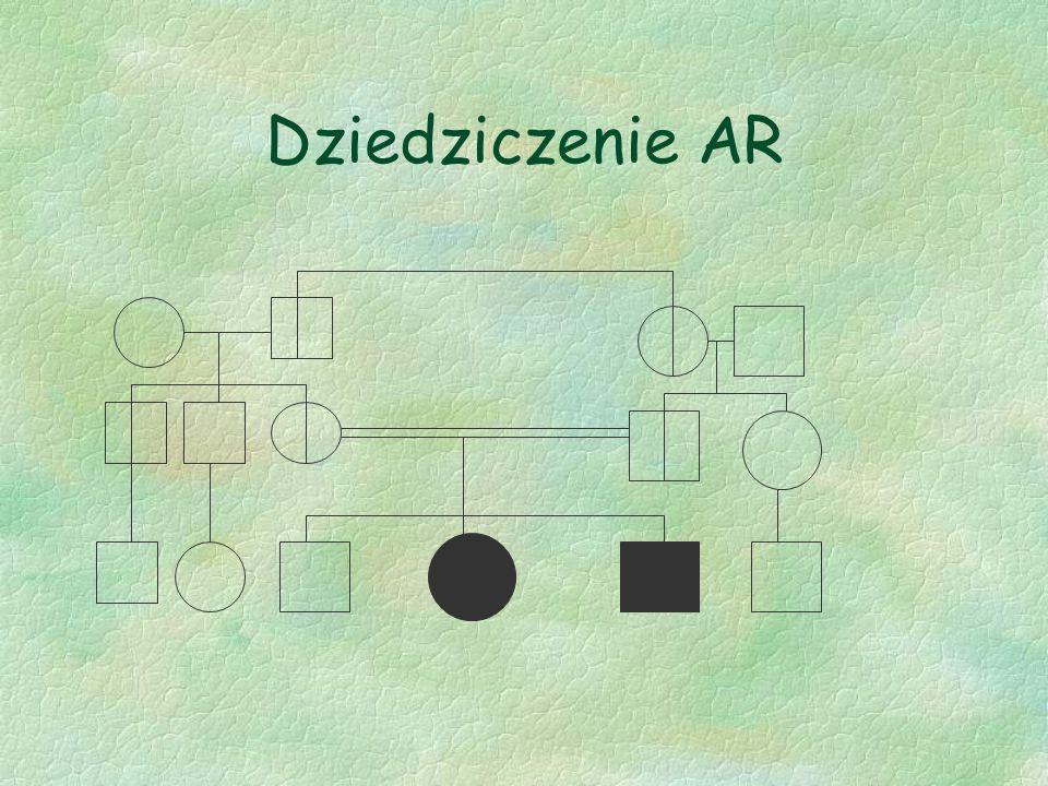 Dziedziczenie AR