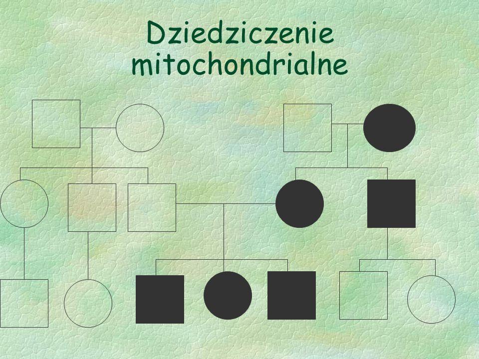 Dziedziczenie mitochondrialne