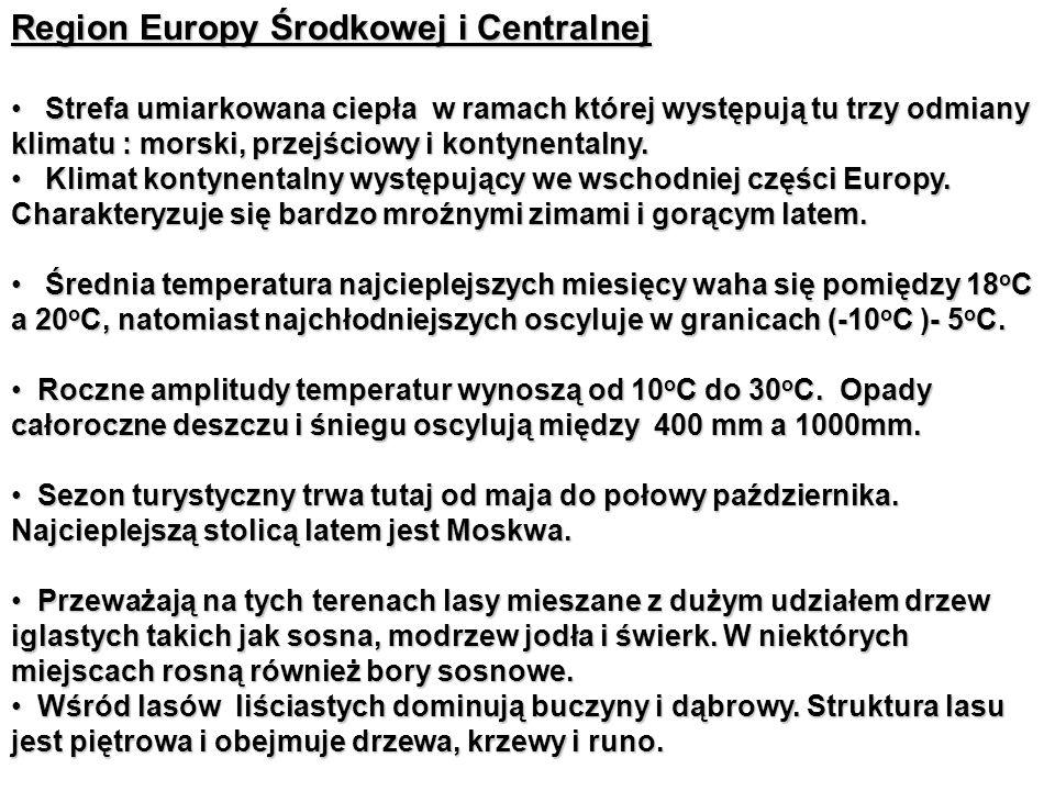 Region Europy Środkowej i Centralnej