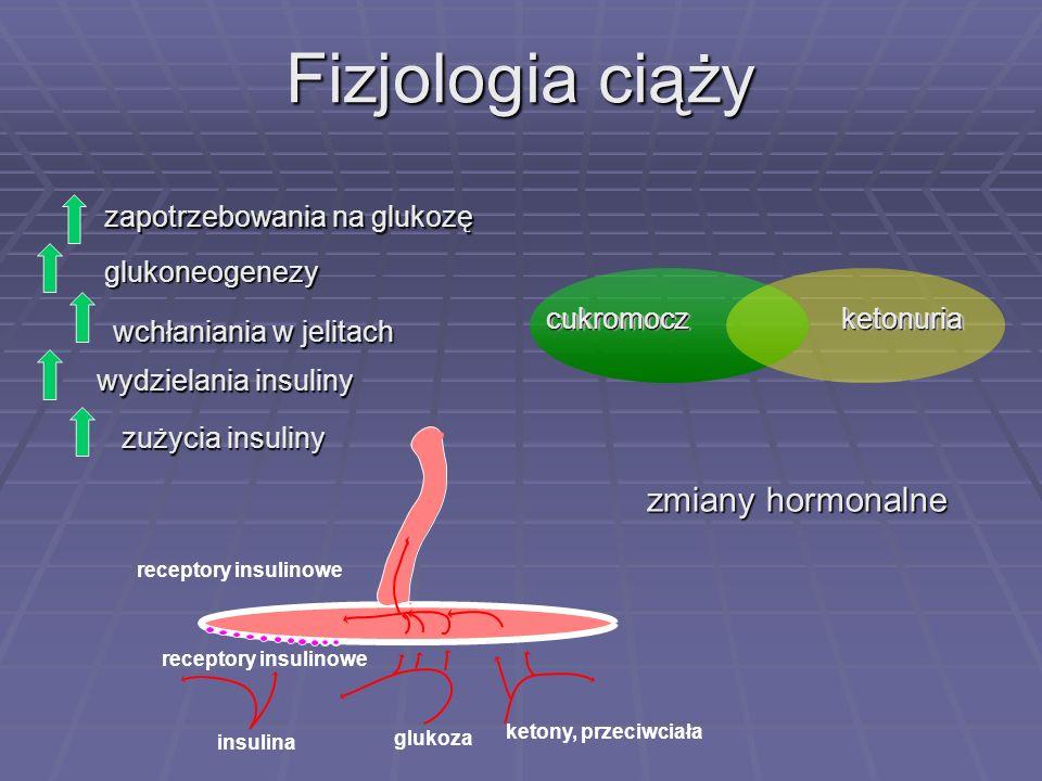 Fizjologia ciąży zmiany hormonalne zapotrzebowania na glukozę