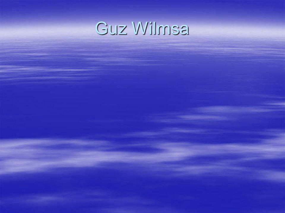 Guz Wilmsa