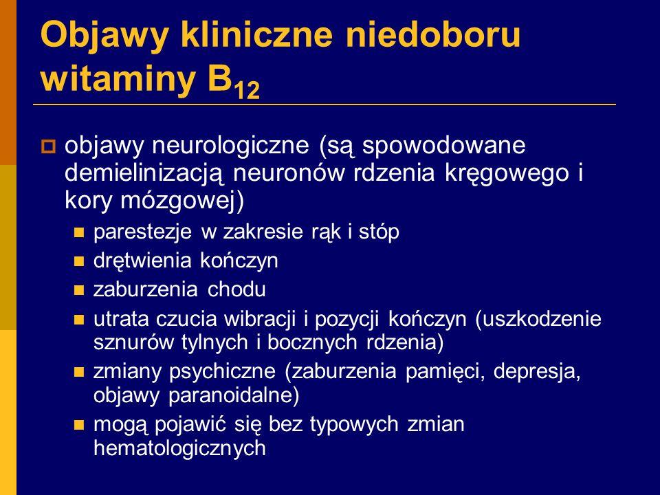 Objawy kliniczne niedoboru witaminy B12