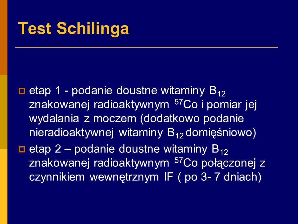Test Schilinga