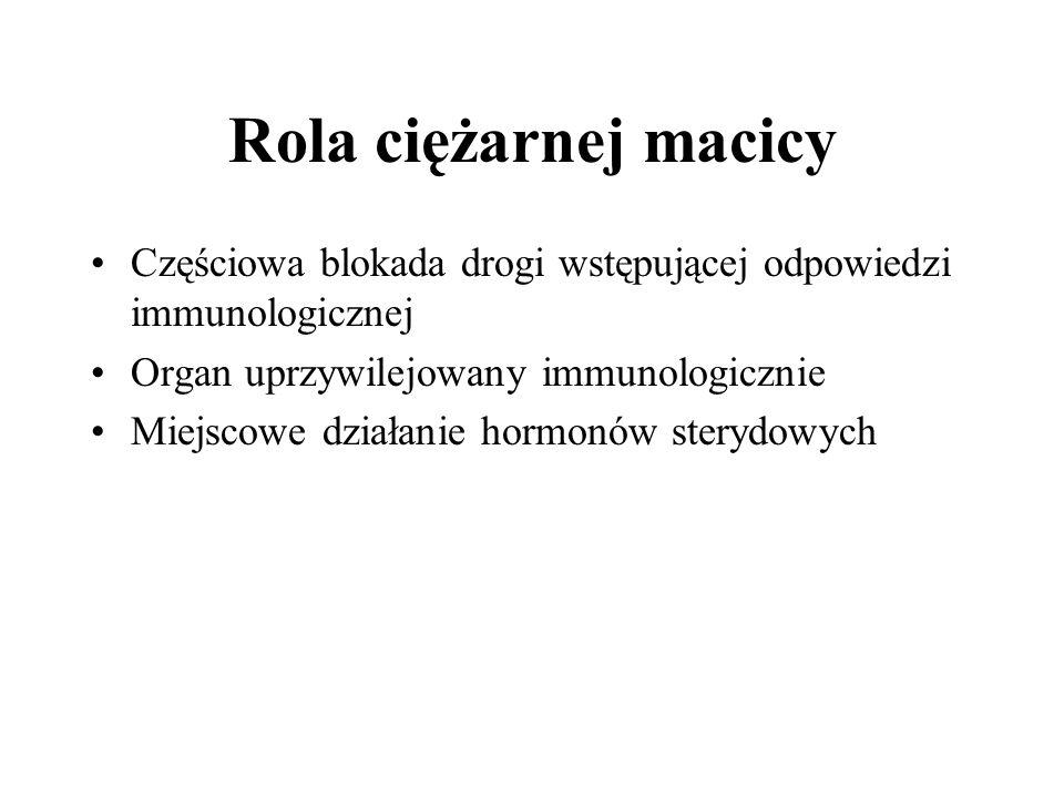Rola ciężarnej macicy Częściowa blokada drogi wstępującej odpowiedzi immunologicznej. Organ uprzywilejowany immunologicznie.