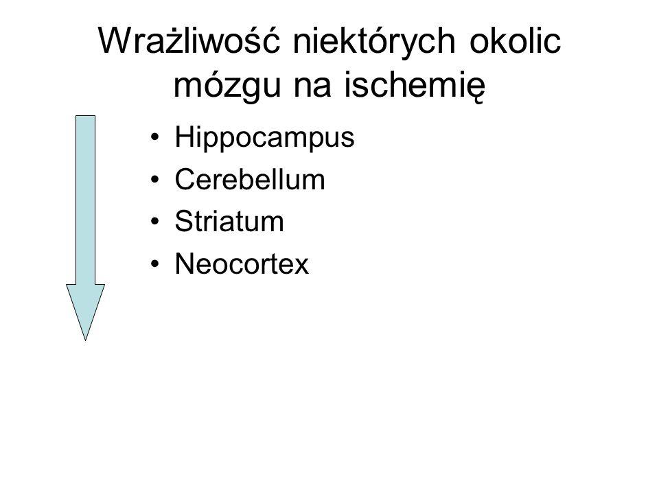 Wrażliwość niektórych okolic mózgu na ischemię