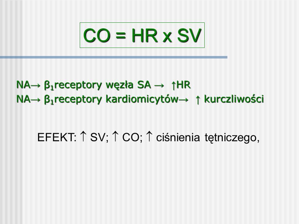 CO = HR x SV EFEKT:  SV;  CO;  ciśnienia tętniczego,