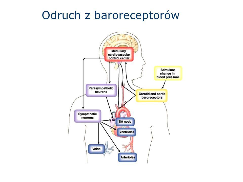 Odruch z baroreceptorów