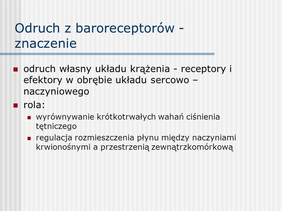 Odruch z baroreceptorów - znaczenie